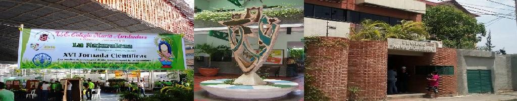 Colegio    Pagina inicial del Colegio